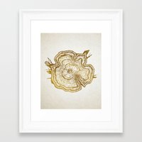 tree rings Framed Art Prints featuring Tree Rings by Emmy Winstead