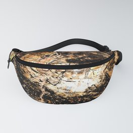 Petrified Tree Rings II Fanny Pack