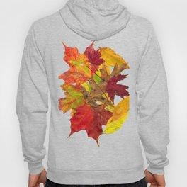 Autumn Fall Leaves Foliage Art Hoody