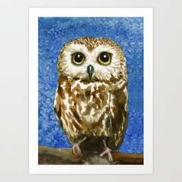 A Saw Whet Owl Art Print