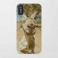 kangaroo iPhone & iPod Cases featuring Kangaroo by Ellenor Argyropoulos