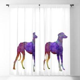 Arabian Greyhound dog in watercolor Blackout Curtain