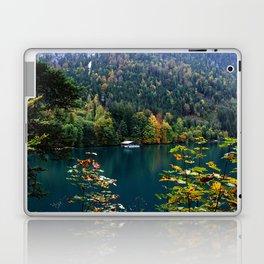 Alpsee Laptop & iPad Skin
