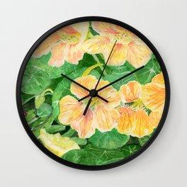 Nasturtium flowers in the garden Wall Clock
