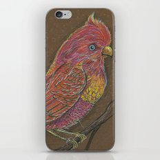 Vivid Bird iPhone & iPod Skin