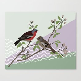 loving chaffinches Canvas Print