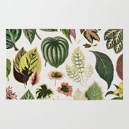 Botanical Print Rug