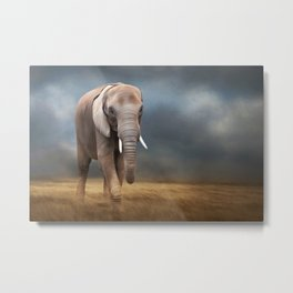 Elephant tour Metal Print