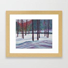 The Spruce Bog, Algonquin Park Framed Art Print