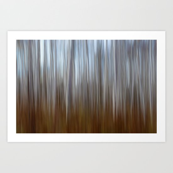 In to the trees.. Art Print