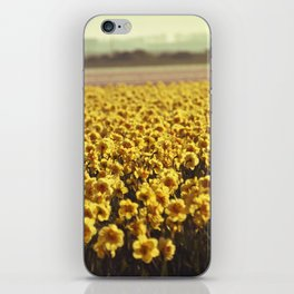 Narcissus field #2 iPhone Skin