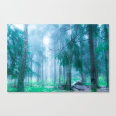 Far from roads... Canvas Print