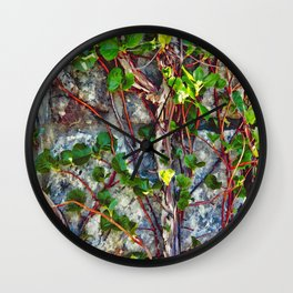 Climbing Vines - Nature's Art Work Wall Clock