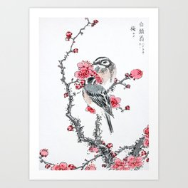 Buntings Sitting On Blossoming Peach Tree - Vintage Japanese Woodblock Print Art By Numata Kashu  Art Print
