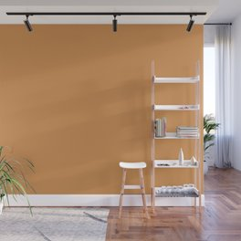 Dunn & Edwards 2019 Curated Colors Brushed Clay (Warm Brownish Orange) DE5243 Solid Color Wall Mural