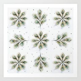 Peacock Medallions Art Print