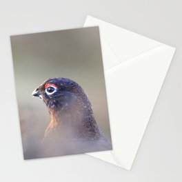 red grouse (Lagopus lagopus scotica) Stationery Cards