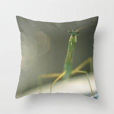 Praying Mantis... Throw Pillow