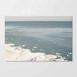 Blue Huron Canvas Print