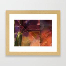 flower structure Framed Art Print