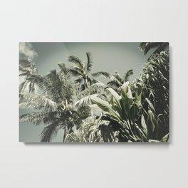 Kuau Hawaii Tropical Palms Sea Green Paia Maui Metal Print
