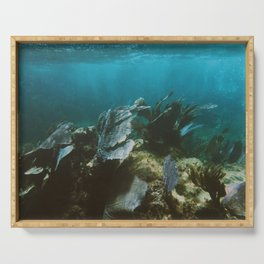 Mexican Caribbean Sealife Serving Tray
