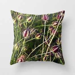 LOVE in a Mist - NIGELLA damascena Throw Pillow