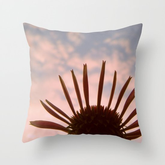 Reach for Your Dreams Throw Pillow