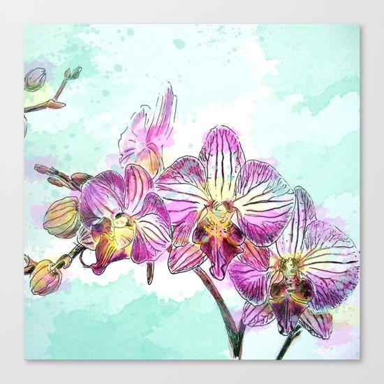 Orchids 02 Canvas Print