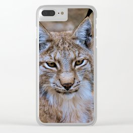 Lynx Clear iPhone Case