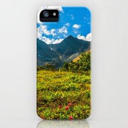 Vicinity of the volcano Vachkazhets iPhone Case