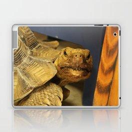It's Tortoise, not Turtle Laptop & iPad Skin