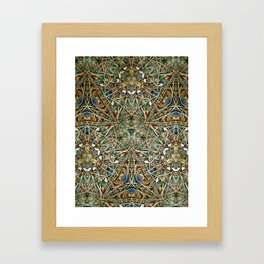 Hidden Beauty No:1 Framed Art Print