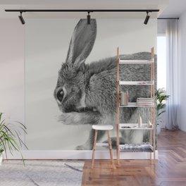 Rabbit Animal Photography Wall Mural