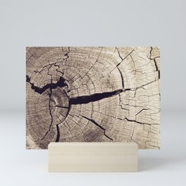 Cracks in Time - Photography #Society6 Mini Art Print