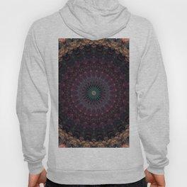 Mandala in dark red and brown tones Hoody