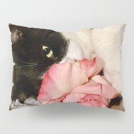 Sweet Orazio Pillow Sham