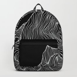 Inverted Crevice Backpack