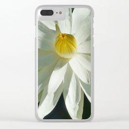 aprilshowers-264 Clear iPhone Case