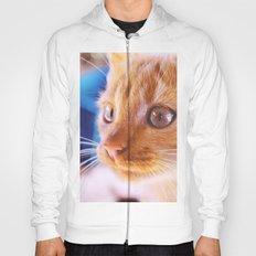 Orange cat Hoody