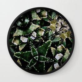 Succulents on Show No 1 Wall Clock