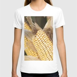 cobs and corn in the farm T-shirt