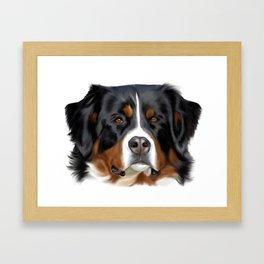 BERNESE MOUNTAIN DOG ART Framed Art Print