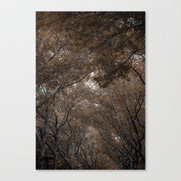 Urban Forest Canvas Print