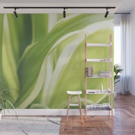Close up of a Chlorophytum, Macro, Green leaves plant Wall Mural