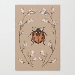 The Ladybug and Sweet Pea Canvas Print