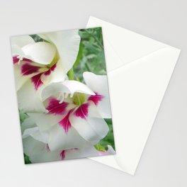 Summer Gladness Stationery Cards