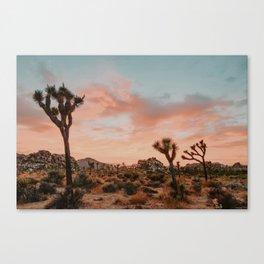Joshua Tree IX / California Desert Canvas Print