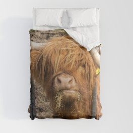 Cute hungry ginger Scottish Highland cow Comforters