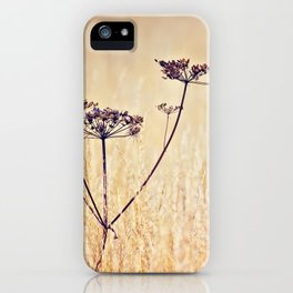 Somewhere Better iPhone Case